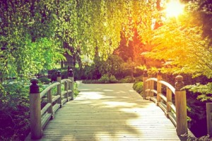 Scenic Garden Bridge at Sunset. Summer in the Garden.